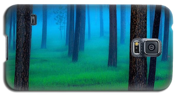 Landscapes Galaxy S5 Case - Black Hills Forest by Kadek Susanto