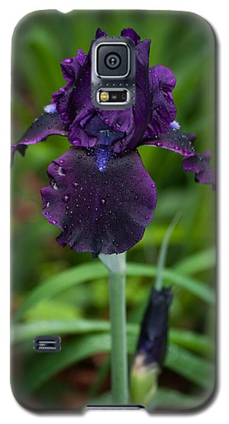 Galaxy S5 Case featuring the photograph Black Iris by Penny Lisowski