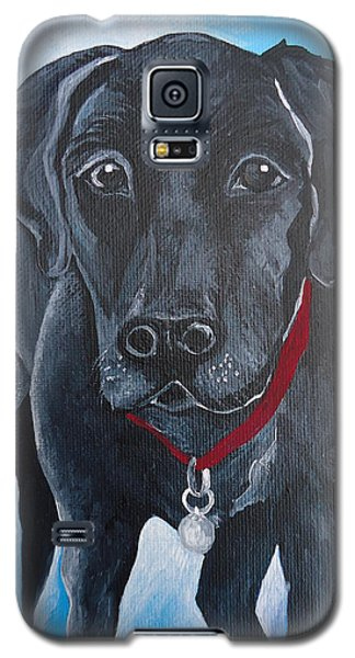 Black Lab Galaxy S5 Case