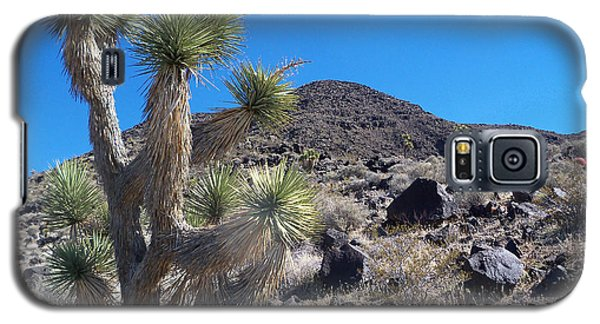 Galaxy S5 Case featuring the photograph Black Mountain Yucca by Alan Socolik