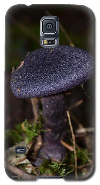 Black Mushroom Galaxy S5 Case
