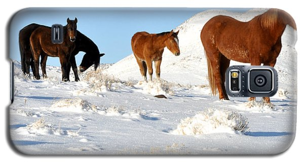 Black N' Brown Mustangs In Snow Galaxy S5 Case