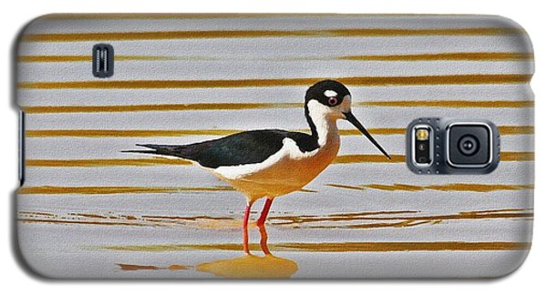 Galaxy S5 Case featuring the photograph Black Neck Stilt Standing by Tom Janca