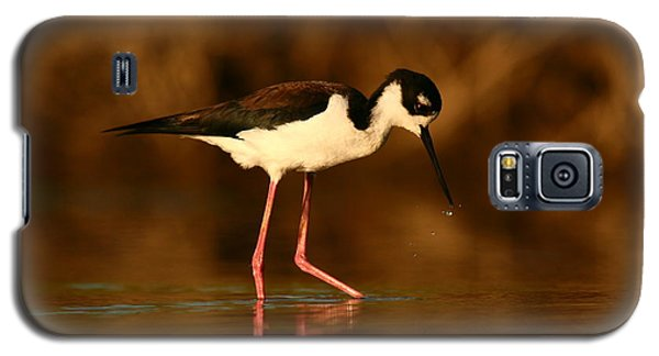 Galaxy S5 Case featuring the photograph Black-necked Stilt Waterdrops by John F Tsumas