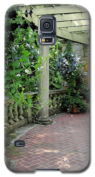 Galaxy S5 Case featuring the photograph Black Petunias by Natalie Ortiz