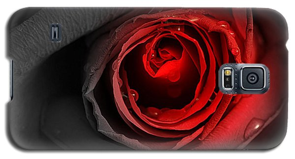 Galaxy S5 Case featuring the photograph Black Rose by Adrian LaRoque