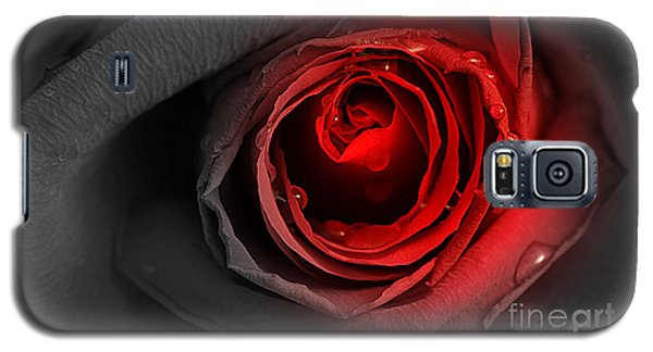 Black Rose Galaxy S5 Case