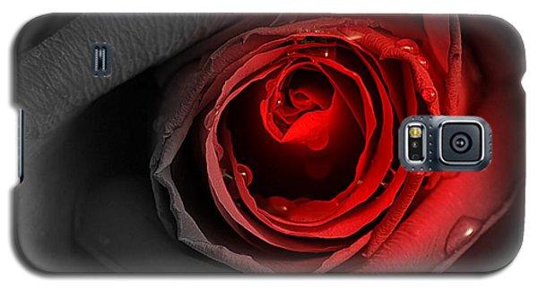 Black Rose Galaxy S5 Case