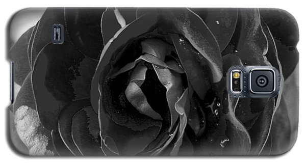Galaxy S5 Case featuring the photograph Black Rose by Nina Ficur Feenan