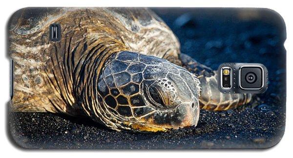 Black Sand Nap Galaxy S5 Case