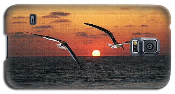 Galaxy S5 Case featuring the photograph Black Skimmers At Sunset by Tom Janca