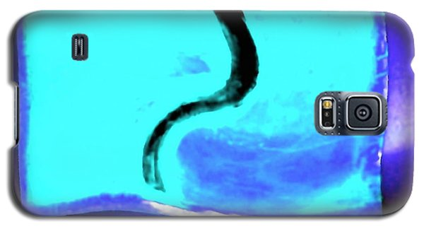 Black Snake On Aqua Galaxy S5 Case by Phoenix De Vries
