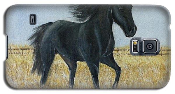 Black Stallion Trot Galaxy S5 Case by Kelly Mills