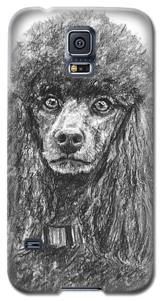 Black Standard Poodle Sketched In Charcoal Galaxy S5 Case