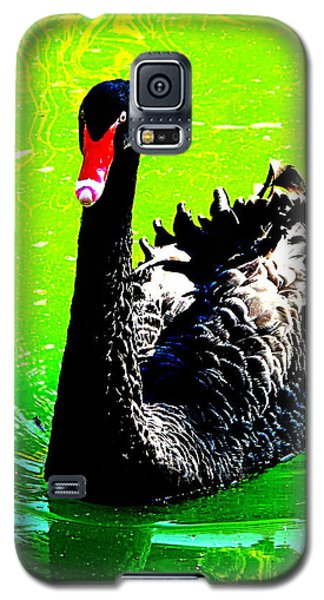 Galaxy S5 Case featuring the photograph Black Swan by John King