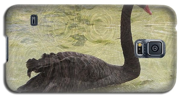 Black Swan Galaxy S5 Case by Kathie Chicoine