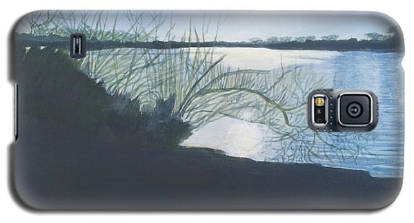 Black Swan Lake Galaxy S5 Case