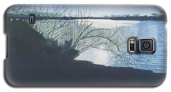 Black Swan Lake Galaxy S5 Case by Joanne Perkins