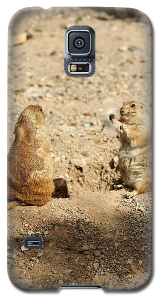 Black Tailed Prairie Dogs Galaxy S5 Case by Daniel Hebard
