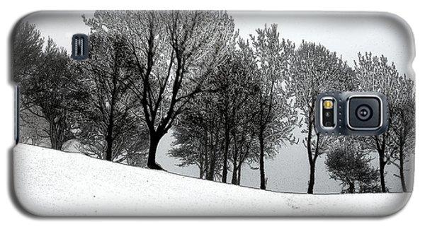 Galaxy S5 Case featuring the photograph Black Trees by Randi Grace Nilsberg