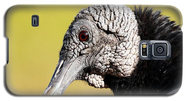 Black Vulture Portrait Galaxy S5 Case