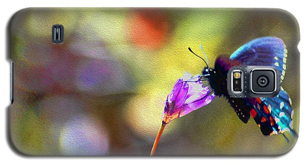 Black Willowtail Butterfly Galaxy S5 Case by William Havle