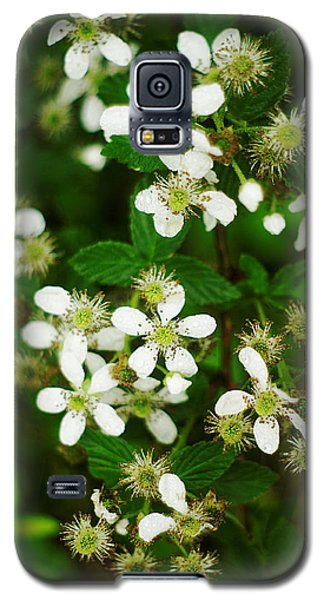 Galaxy S5 Case featuring the photograph Blackberry Blossoms by Suzanne Powers