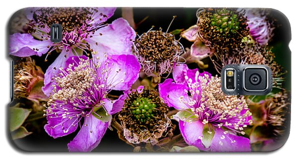 Galaxy S5 Case featuring the photograph Blackberry Flower by Edgar Laureano