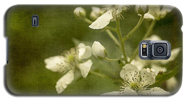 Blackberry Flowers With Textures Galaxy S5 Case