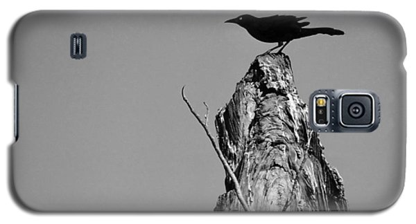 Blackbird Galaxy S5 Case