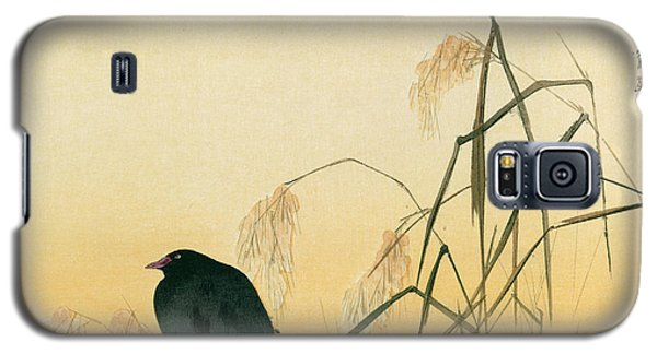 Blackbird Galaxy S5 Case - Blackbird by Japanese School