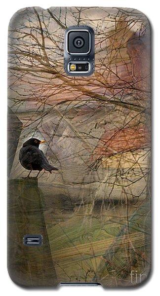 Galaxy S5 Case featuring the photograph Blackbird by Liz  Alderdice