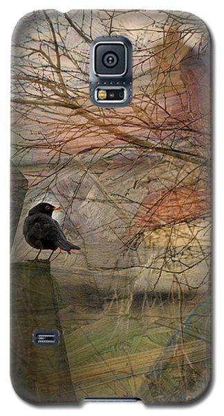 Blackbird Galaxy S5 Case by Liz  Alderdice