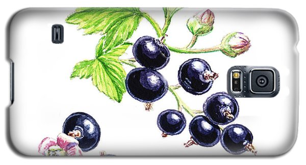Galaxy S5 Case featuring the painting Blackcurrant Botanical Study by Irina Sztukowski