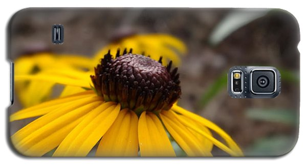 Galaxy S5 Case featuring the photograph Blackeyed Susan by Alan Lakin