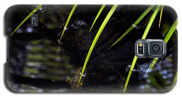 Galaxy S5 Case featuring the photograph Blades In The Pond by Irma BACKELANT GALLERIES