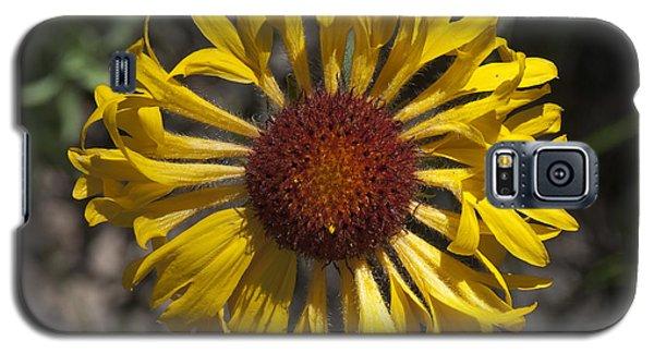 Blanket Flower Galaxy S5 Case
