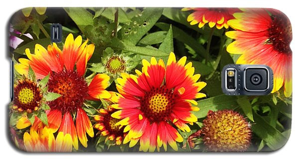 Blanket Flower Galaxy S5 Case