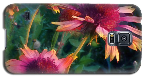 Blanket Flowers At Sunset Galaxy S5 Case