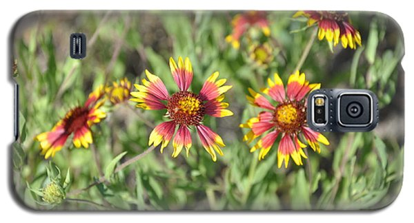 Blanketflower Galaxy S5 Case