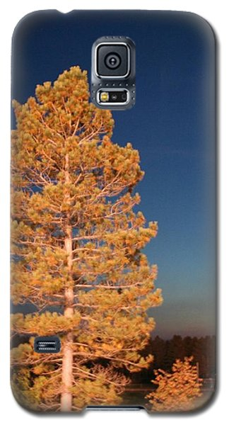 Galaxy S5 Case featuring the photograph Blazing by Debra Kaye McKrill