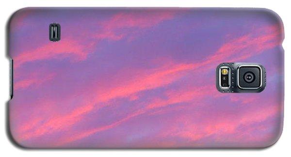 Blazing Pines Galaxy S5 Case by Joy Hardee