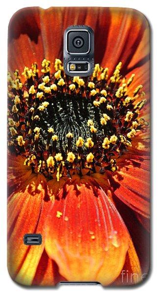 Blazing Sunflower Galaxy S5 Case