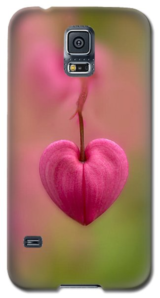 Bleeding Heart Flower Galaxy S5 Case