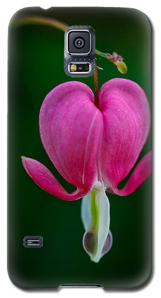 Bleeding Heart Galaxy S5 Case