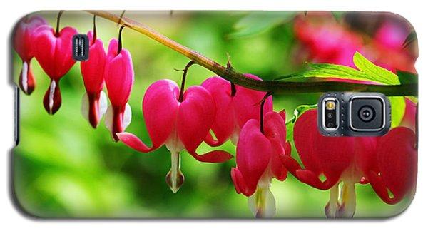 Romantic Bleeding Hearts Galaxy S5 Case