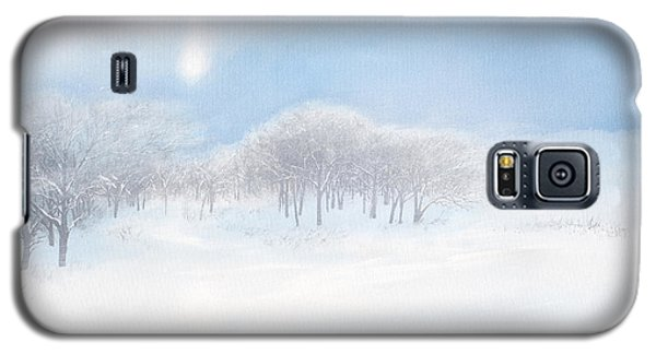 Blizzard Coming Galaxy S5 Case