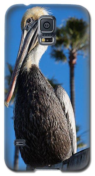 Blond Pelican Galaxy S5 Case