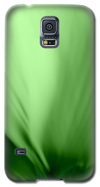 Galaxy S5 Case featuring the photograph Bloom In Green by Mary Beth Landis