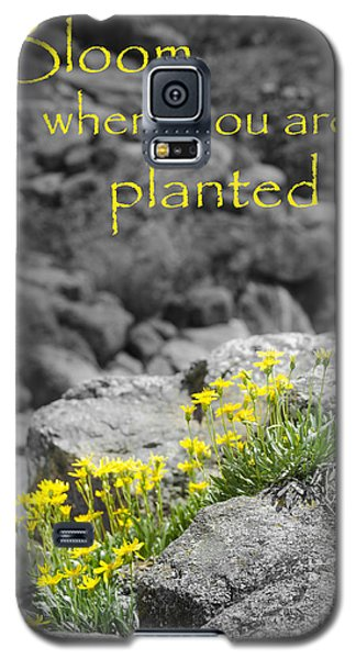 Bloom Where You Are Planted Galaxy S5 Case by Debbie Karnes
